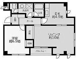 エヌアイハイム[2階]の間取り