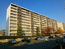 八戸ノ里グランドマンションA棟[906号室号室]の外観
