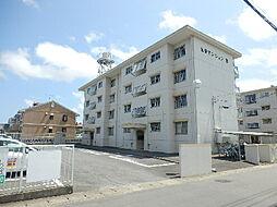 光栄マンション B棟[402号室]の外観
