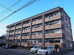 グランド・ステージ桜華 3階[304号室]の外観