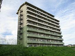 URアーバンラフレ小幡7号棟[10階]の外観