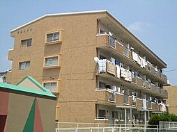 七苫ハイツ[4階]の外観