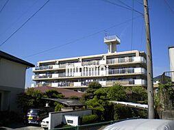 知立タイガーマンション[4階]の外観