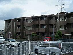 岩澤マンション[3階]の外観