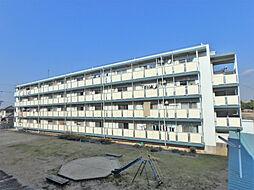 兵庫県加古川市尾上町池田の賃貸マンションの外観