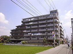 キャピタルキダ[2階]の外観