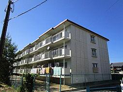 滋賀県湖南市石部南1丁目の賃貸マンションの外観