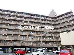 岡山県岡山市南区下中野丁目なしの賃貸マンションの外観