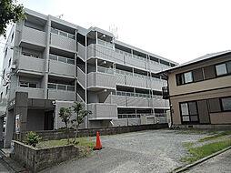 シャトレ大浦V[3階]の外観