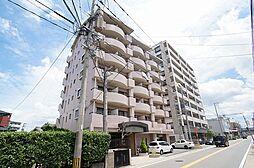 セラ箱崎南[7階]の外観
