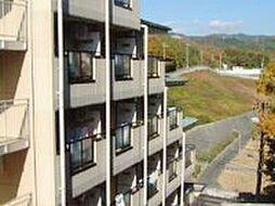 大阪府高槻市奈佐原2丁目の賃貸マンションの外観