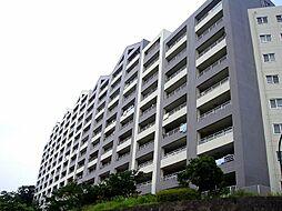 コモンシティ湘南衣笠サウスーリッジ[A305号室]の外観