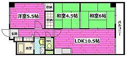 メゾンR217[2階]の間取り
