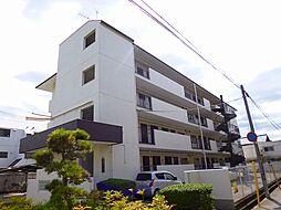 楠葉マンション[4階]の外観