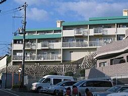 イトーピア高槻松が丘[103号室]の外観