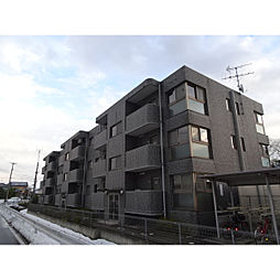 新潟県新潟市西区鳥原の賃貸マンションの外観