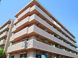 宮城県仙台市太白区富沢3丁目の賃貸マンションの外観