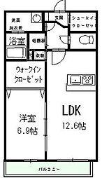 長野県松本市大字島立の賃貸マンションの間取り