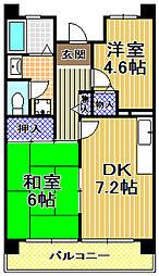 サンラフレ出来島8号棟[4階]の間取り