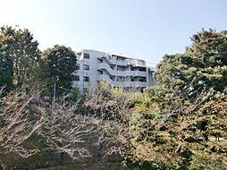 福岡市中央区桜坂3丁目
