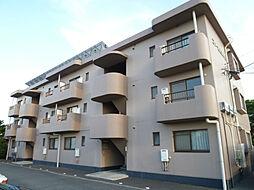 静岡県磐田市下万能の賃貸マンションの外観