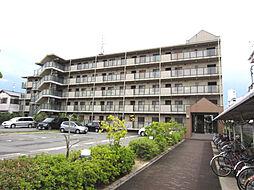 大阪府泉佐野市中町1丁目の賃貸マンションの外観