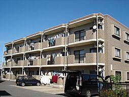 千葉県市原市五井西1丁目の賃貸マンションの外観