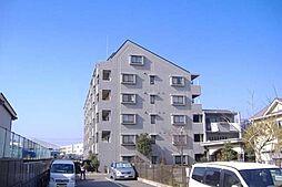 神奈川県茅ヶ崎市南湖4丁目の賃貸マンションの外観