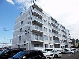 シャテロ菊水元町[207号室]の外観