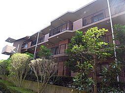 旭区本宿町 グレイスコート二俣川壱番館 303号室[303号室]の外観