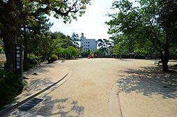 メゾン甲子園南棟[332号室]の外観