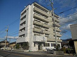 愛媛県松山市磯河内の賃貸マンションの外観