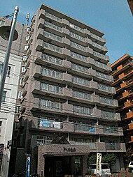 北海道札幌市中央区南十二条西9丁目の賃貸マンションの外観