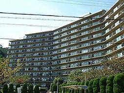 兵庫県宝塚市中山桜台5丁目の賃貸マンションの外観