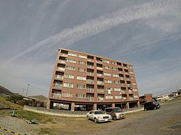 レクサスYOSHIOKA[608号室]の外観