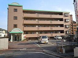 広島県広島市安佐北区可部南5丁目の賃貸マンションの外観