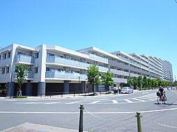 リライズガーデン西新井スカイレジデンス[1223号室]の外観