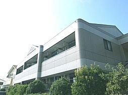 メゾン・ド・ケヤキ[207号室]の外観