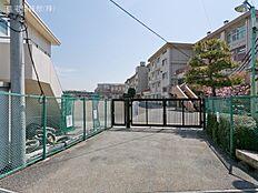 町田市立堺中学校 距離750m