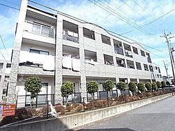 千葉県柏市松葉町3丁目の賃貸マンションの外観