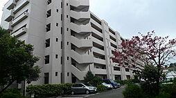 フロール新杉田[6階]の外観