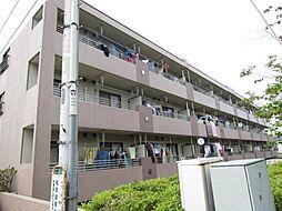 埼玉県新座市片山1丁目の賃貸マンションの外観