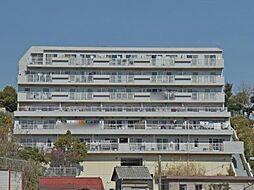 カロディカーサ藤が丘[3階]の外観