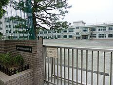 小岩第三中学校 493m