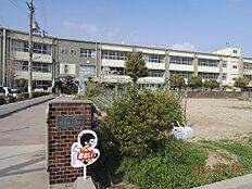 小学校野崎西小学校まで207m