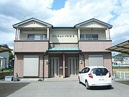 [テラスハウス] 栃木県宇都宮市野沢町 の賃貸【/】の外観