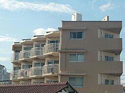 新井ビル[401号室]の外観