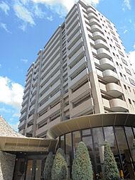 ライオンズマンション上杉中央[14階]の外観
