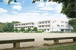 つくば市立手代木中学校(600m)
