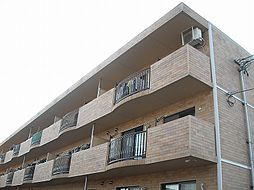 新潟県新潟市江南区亀田向陽1丁目の賃貸マンションの外観
